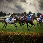 Horse Racing Syndicates in Addlestone 4
