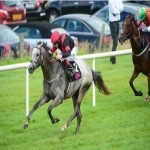 Racehorse shares in Allenheads 6